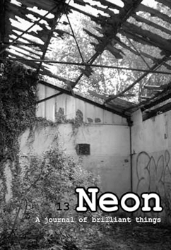 Neon Literary Magazine issue thirteen - magical realist, surreal and slipstream short stories and poetry.