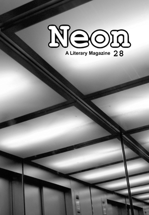 Neon Literary Magazine issue twenty-eight - magical realist, surreal and slipstream short stories and poetry.